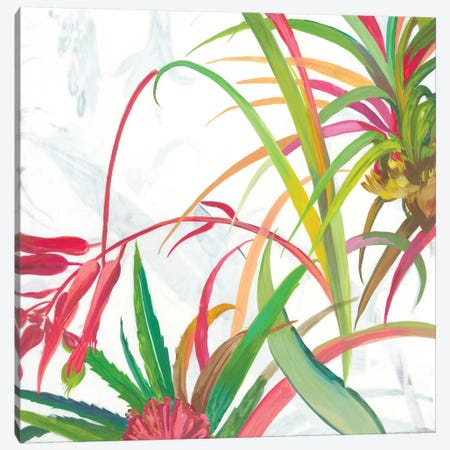 Tropical II Canvas Print #ASJ344} by Asia Jensen Canvas Wall Art