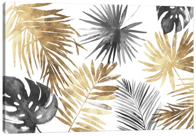 Tropical Palms I Canvas Art Print
