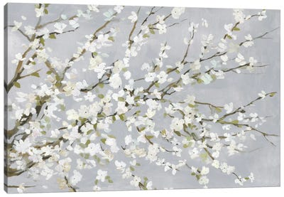 White Blossoms Canvas Art Print