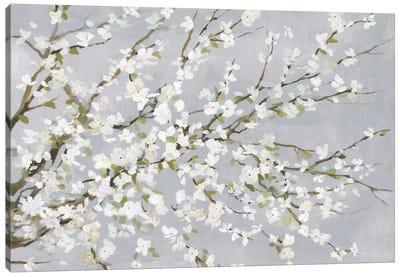 White Blossoms Canvas Art Print
