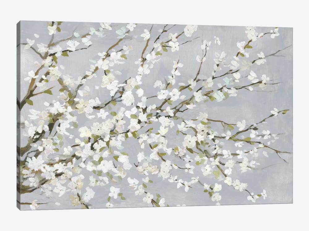 White Blossoms by Asia Jensen 1-piece Canvas Wall Art