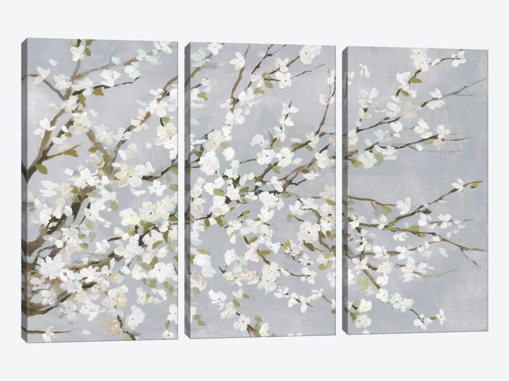 White Blossoms by Asia Jensen 3-piece Canvas Art