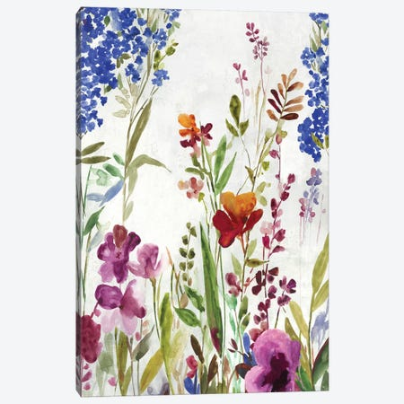 Spring Field Canvas Print #ASJ358} by Asia Jensen Canvas Wall Art