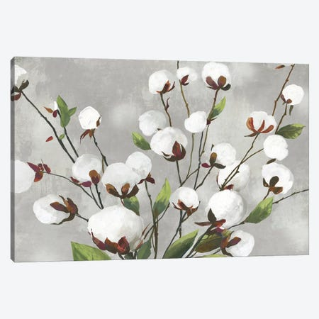 Cotton Ball Flowers I  Canvas Print #ASJ360} by Asia Jensen Art Print