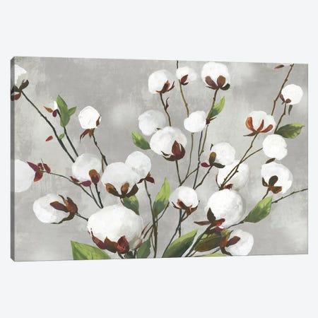 Cotton Ball Flowers I  Canvas Print #ASJ360} by Asia Jensen Art Print