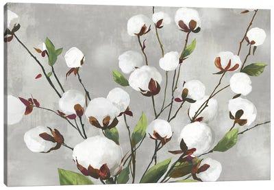 Cotton Ball Flowers I  Canvas Art Print