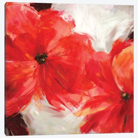 Rosy Canvas Print #ASJ366} by Asia Jensen Canvas Wall Art