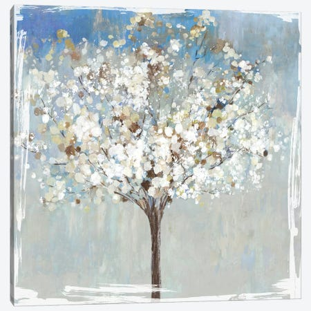 Winter Still Tree  Canvas Print #ASJ375} by Asia Jensen Canvas Art Print