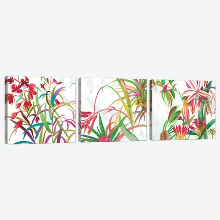 Tropical Triptych Canvas Print Set #ASJ3HSET001} by Asia Jensen Canvas Art