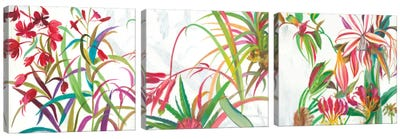 Tropical Triptych Canvas Art Print