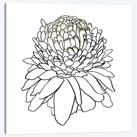 To The Dandelion I Canvas Print #ASJ405} by Asia Jensen Art Print