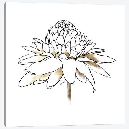 To The Dandelion II Canvas Print #ASJ406} by Asia Jensen Canvas Art Print