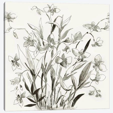 Cherishing Flora  Canvas Print #ASJ430} by Asia Jensen Canvas Print