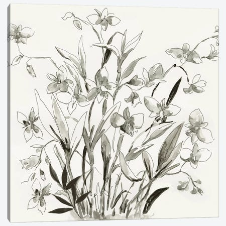 Cherishing Flora  Canvas Print #ASJ430} by Asia Jensen Canvas Print