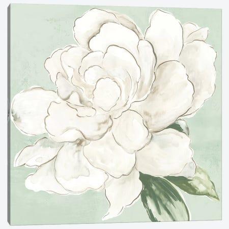Garden Princess Canvas Print #ASJ434} by Asia Jensen Canvas Artwork