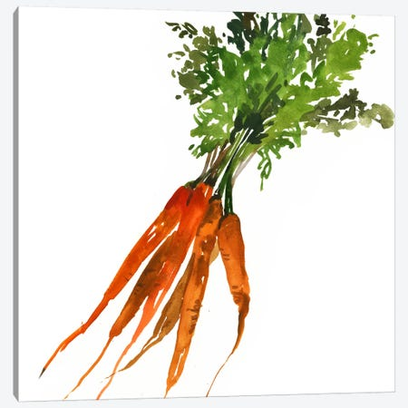 Carrot Canvas Print #ASJ46} by Asia Jensen Canvas Print