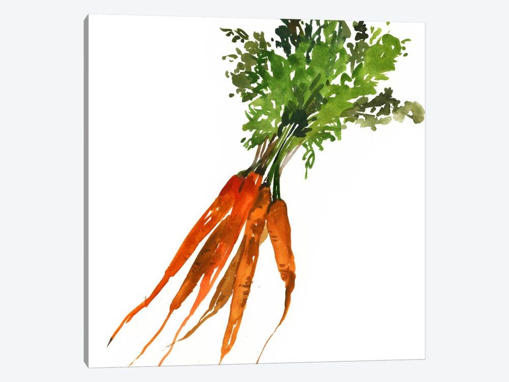 Carrot by Asia Jensen 1-piece Canvas Art