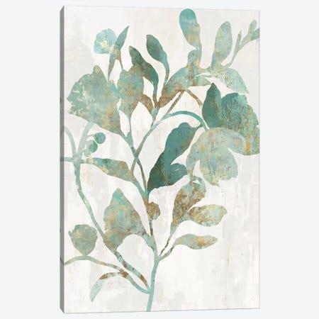 Rustic Flower I Canvas Print #ASJ473} by Asia Jensen Canvas Print