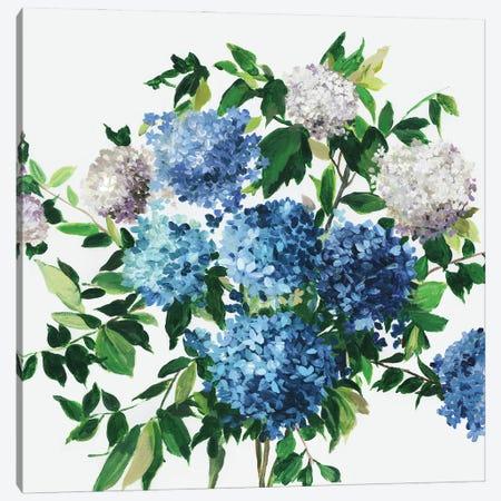 Blue Petals Canvas Print #ASJ485} by Asia Jensen Canvas Art Print