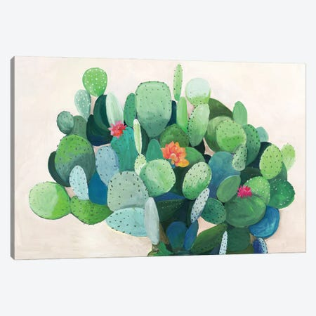 Cactus Bloom Canvas Print #ASJ487} by Asia Jensen Canvas Print