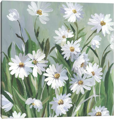 Daisy Day Canvas Art Print