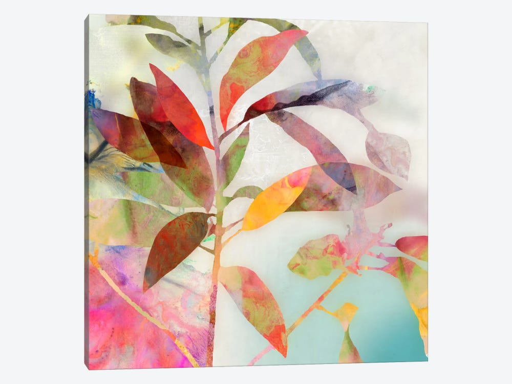 Charlotte I by Asia Jensen 1-piece Canvas Art Print
