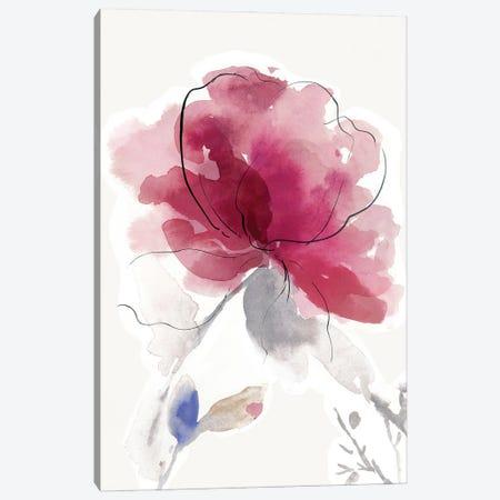 Rosy Bloom II Canvas Print #ASJ504} by Asia Jensen Canvas Art
