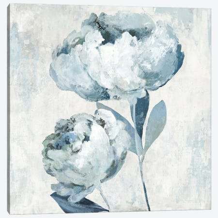 Secret Lullaby II Canvas Print #ASJ506} by Asia Jensen Canvas Wall Art