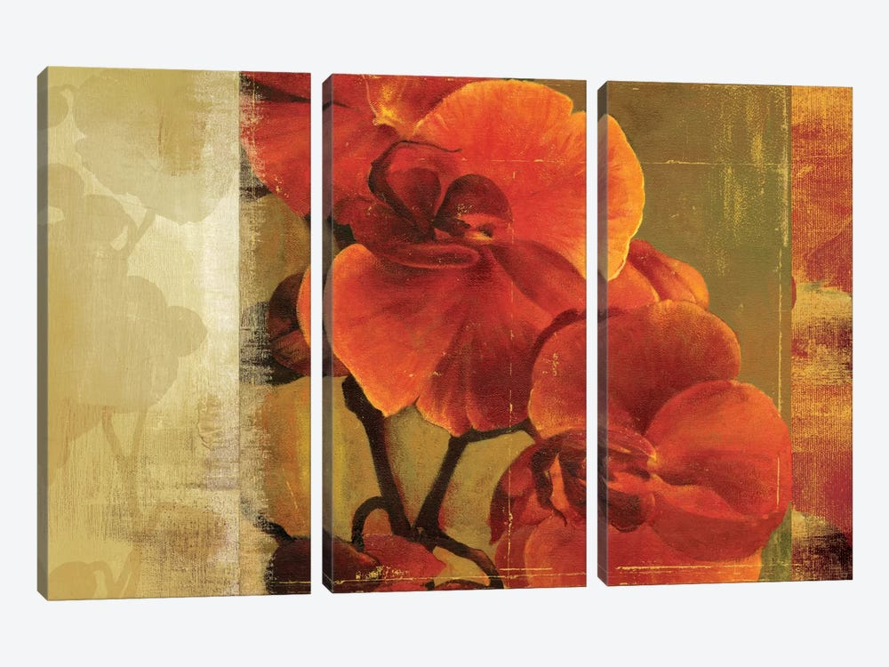 Crimson Delight by Asia Jensen 3-piece Canvas Wall Art