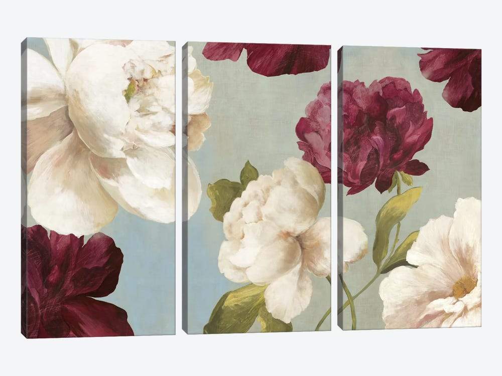 Deep Peonies I by Asia Jensen 3-piece Canvas Wall Art