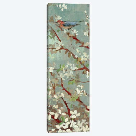 Dream Of Spring II Canvas Print #ASJ69} by Asia Jensen Canvas Art