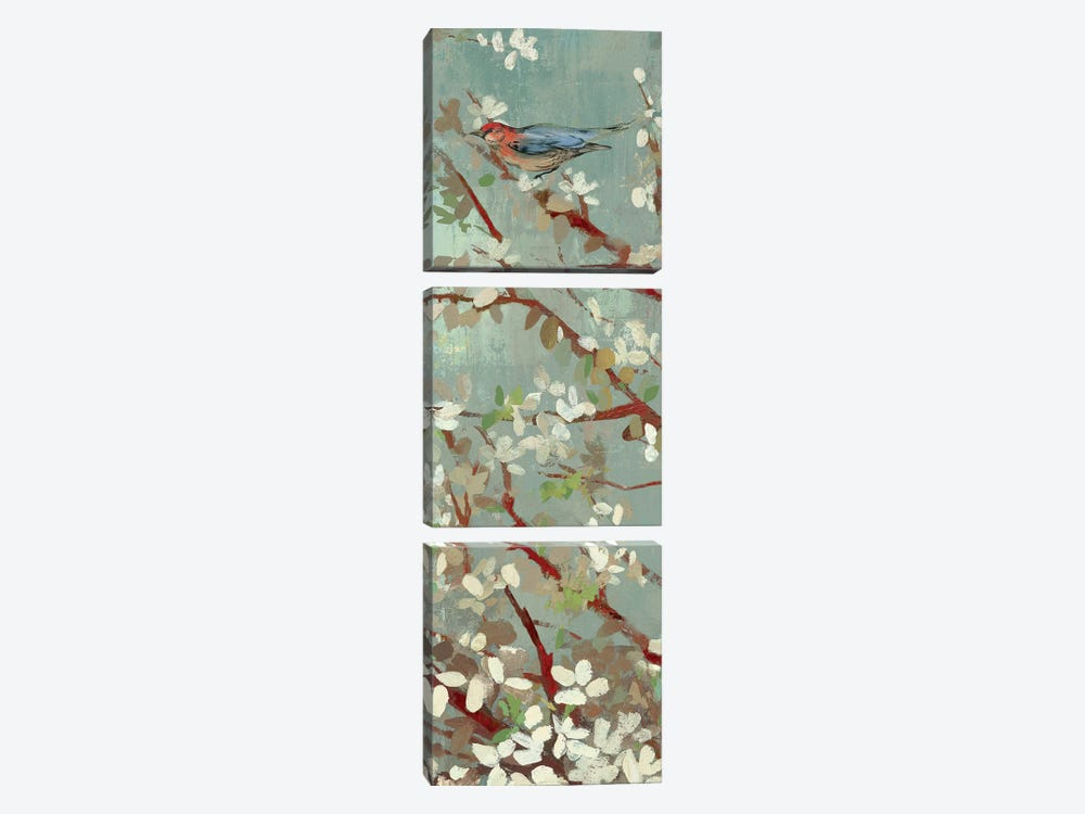 Dream Of Spring II by Asia Jensen 3-piece Canvas Print