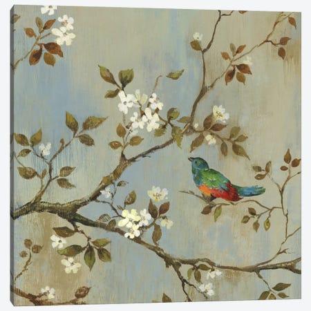 Apple Bloom I Canvas Print #ASJ7} by Asia Jensen Canvas Artwork