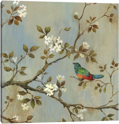 Apple Bloom I Canvas Art Print