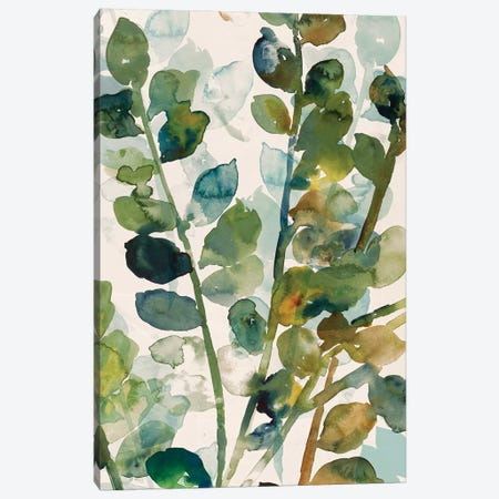 Fall Leaves II Canvas Print #ASJ81} by Asia Jensen Canvas Art