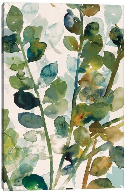 Fall Leaves II Canvas Art Print