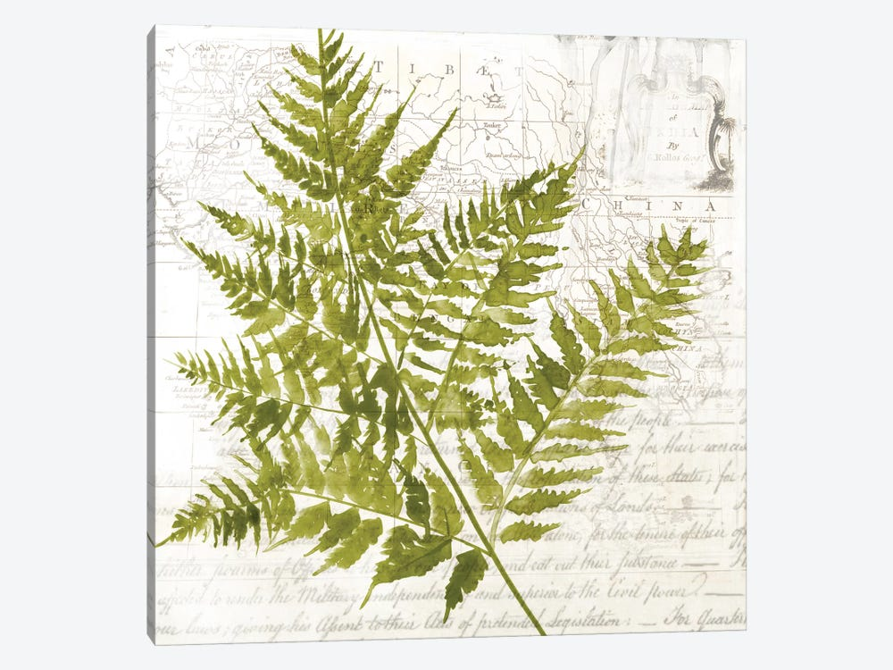 Fern I by Asia Jensen 1-piece Art Print