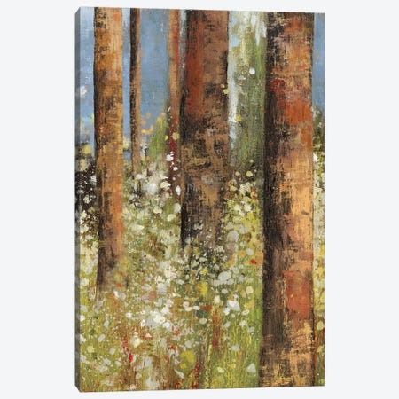Field Of Flowers I Canvas Print #ASJ88} by Asia Jensen Canvas Art