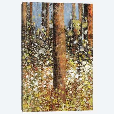 Field Of Flowers II Canvas Print #ASJ89} by Asia Jensen Canvas Artwork