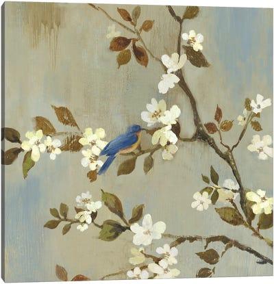 Apple Bloom III Canvas Art Print
