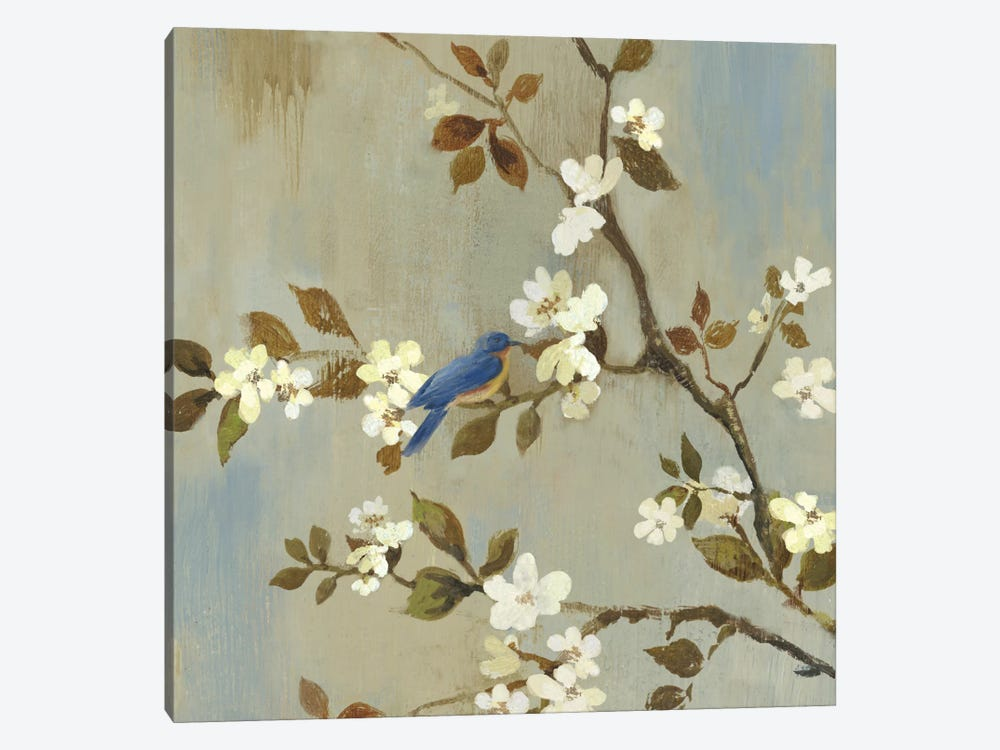Apple Bloom III by Asia Jensen 1-piece Canvas Art Print