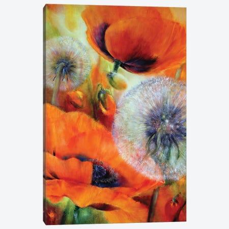 Poppies And Dandelion Canvas Print #ASK114} by Annette Schmucker Canvas Artwork