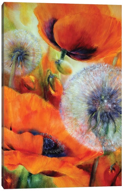 Poppies And Dandelion Canvas Art Print