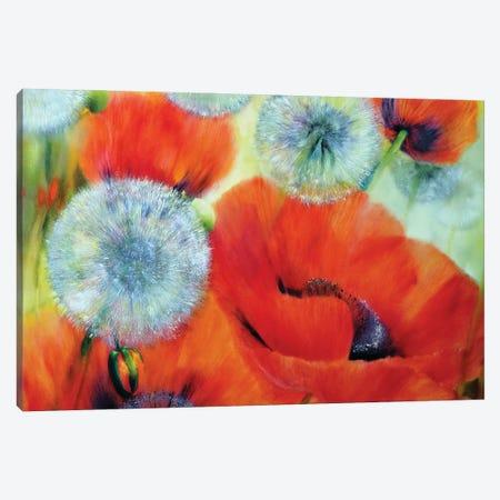 A Summer Day Canvas Print #ASK3} by Annette Schmucker Canvas Wall Art