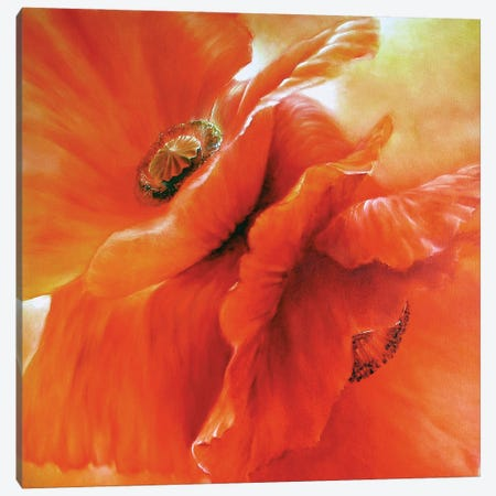 Red Poppies Canvas Print #ASK63} by Annette Schmucker Art Print