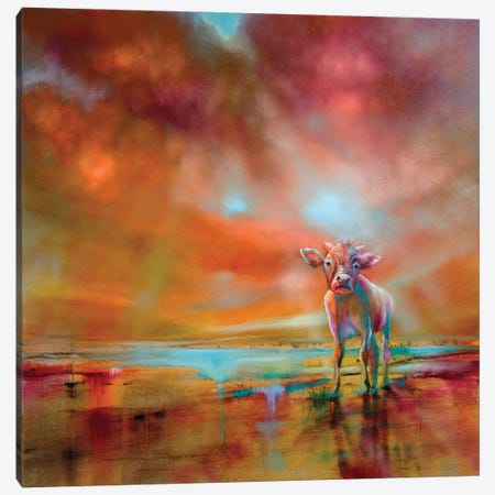 The Coloured Cow Canvas Print #ASK78} by Annette Schmucker Canvas Art