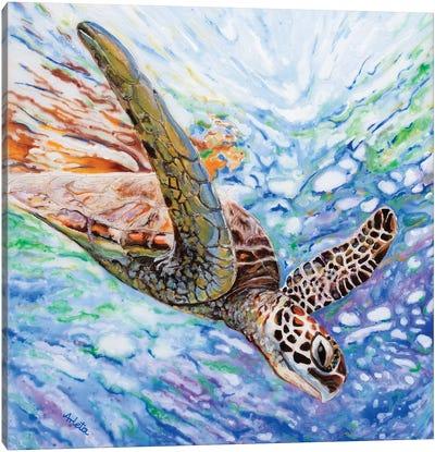 Diving Turtle Canvas Art Print