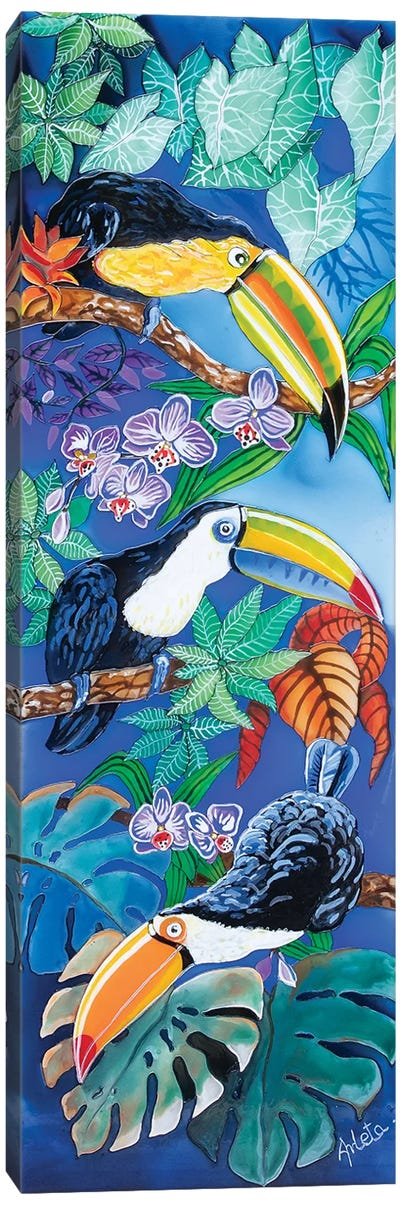 Three Toucans Canvas Art Print