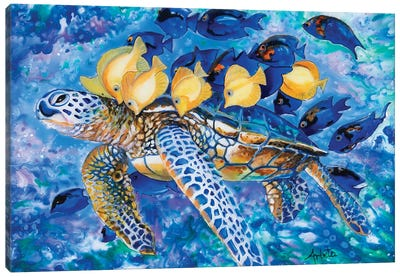 Turtle And The Fishes Canvas Art Print