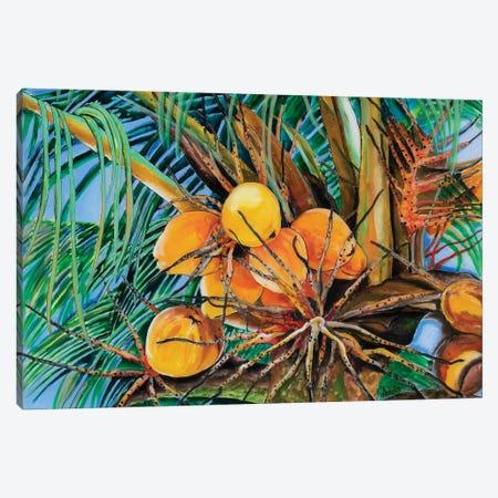 Coconuts Canvas Print #ASL5} by Arleta Smolko Canvas Wall Art